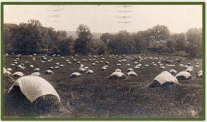 Charles Jarvis's Maple Farm 1911